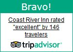 Tripadvisor Traveler Reviews